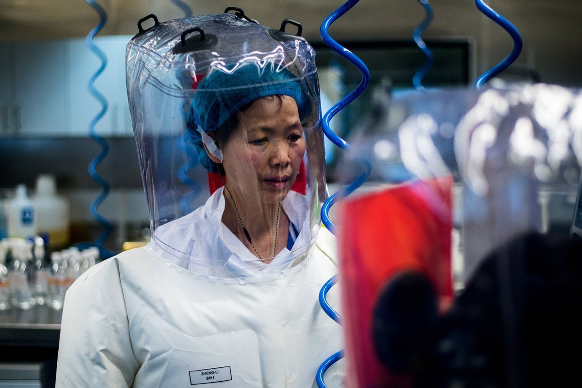 中國武漢病毒研究所P4實驗室的石正麗研究員在進行實驗。(JOHANNES EISELE/AFP via Getty Images)