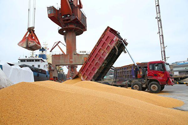歐盟委員會公佈最新數據,7月歐盟進口美國大豆同比激增283%。(AFP/Getty Images)