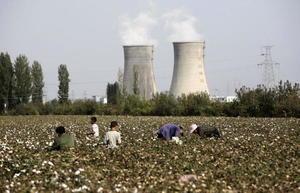 美禁新疆棉花 中國巨額出口時裝鏈斷裂
