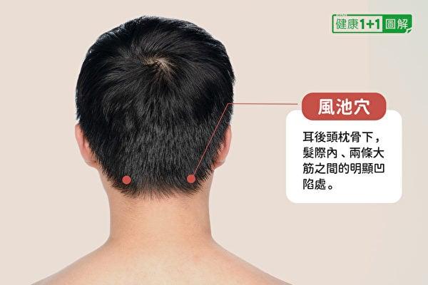 風池穴在耳後頭枕骨下,髮際內、兩條大筋之間的明顯凹陷處。(健康1+1/大紀元)