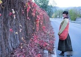 拍疫情照 北京畫家等11人被捕 律師譴責中共