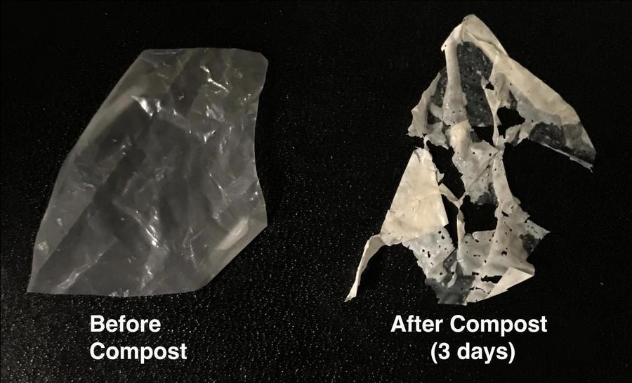 新型塑料面世 溫水浸泡即降解成為肥料