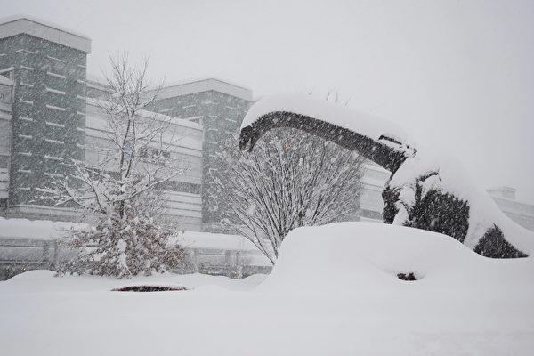 圖為2021年1月9日,福井市福井火車站前的一隻恐龍雕像被大雪覆蓋著。(Photo by STR/JIJI PRESS/AFP via Getty Images)