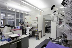 FDA宣佈新政策 旨在加速美國中共病毒測試