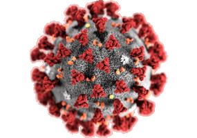 中共學者:中共病毒或源自武漢疾控中心