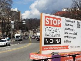 研究報告:中共系統偽造器官捐獻數據