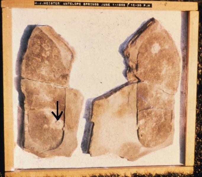 《轉法輪》中提及的若干史前文明案例(1)
