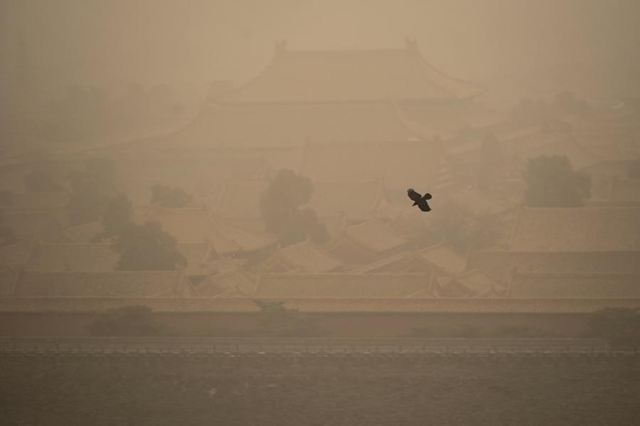 【多圖】沙塵暴吹襲北京 黃沙籠罩白日無光