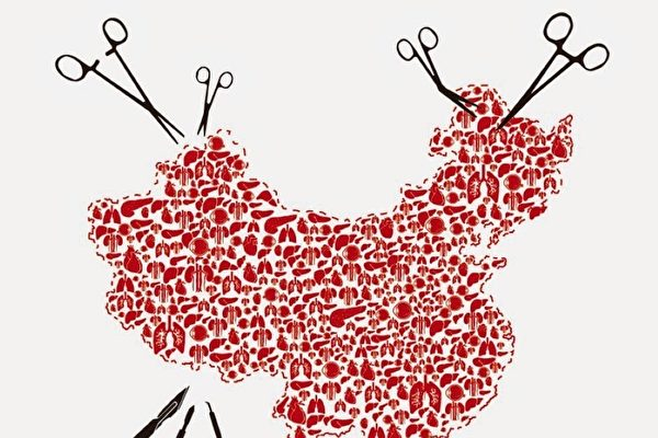 陳靜瑜稱兩三天做一台肺移植引狐疑