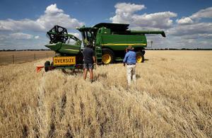 對澳洲貿易報復 報告:中共潛在損失遠超澳洲
