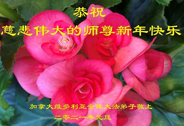 維多利亞法輪功學員向李洪志師父拜年。(明慧網)
