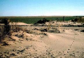 中國五分之一國土沙漠化 農牧民被迫搬遷
