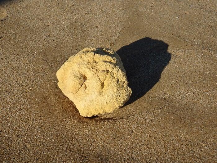 也門漁民出海意外發現珍稀龍涎香。圖為海灘上龍涎香示意圖。(shutterstock)