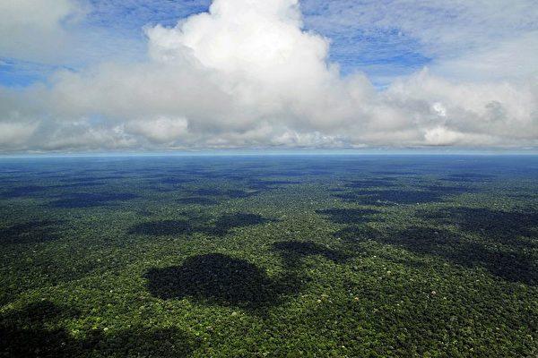 深陷債務 厄瓜多爾出售亞馬遜雨林給中企