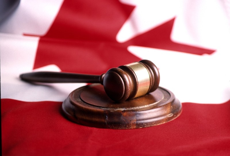 中共政協常務委員崔海林(譯音)2011年1月申請投資移民加拿大,隱瞞了其政協委員身份,移民官以其撒謊為由,拒絕了其投資移民的申請。 (Getty Images)