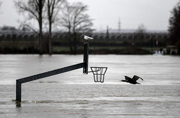2021年2月3日,德國蒙多夫(Mondorf),融雪和持續降雨造成萊茵河氾濫,一座籃球架大部份遭水淹沒。(INA FASSBENDER/AFP via Getty Images)
