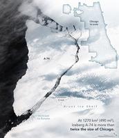 南極巨大冰山脫落 顯露隱藏近半世紀海洋生物