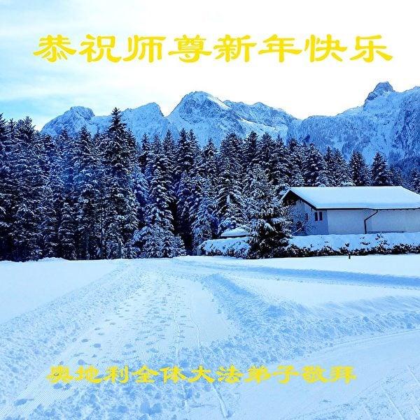 奧地利全體法輪功學員恭祝師尊新年快樂。(明慧網)