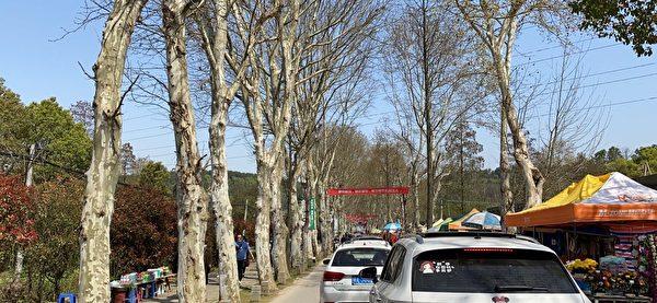 眾多的車輛堵塞了去陵園的道路。(知情人提供)