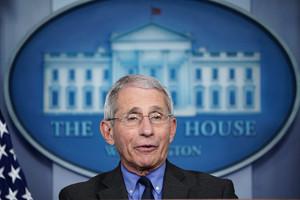 特朗普要解僱福西?白宮予以反駁