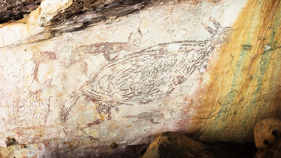 澳洲發現最古老岩畫 1.73萬年前的袋鼠