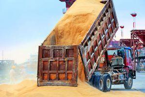 美農業部證實:向中國出售72萬噸大豆