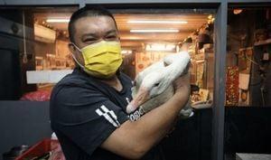 來台灣東北大廚:疫情是殺手 抵不過台人情味