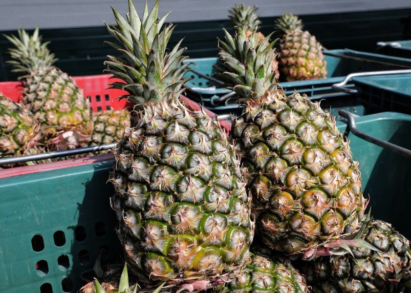 中共打菠蘿牌擠壓台灣經濟 被指沒戲了