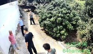 中共禁公職人員轉發洪災信息 維權人被告誡