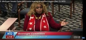 田雲:數十證人現身密歇根聽證會 揭選舉舞弊