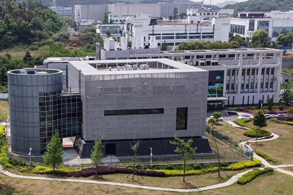 美調查德州大學系統跟武漢實驗室的關聯