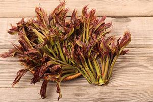 大陸香椿堪比波士頓龍蝦 最貴1斤逾200元