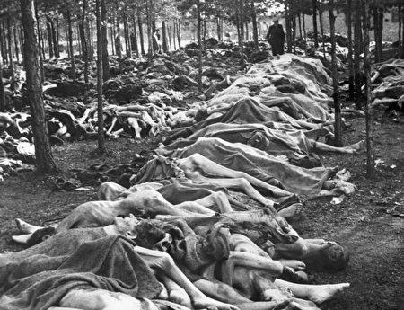 1945年4月15日被解放時,納粹德國貝爾森集中營裏成排的屍體,這只是地面上未被掩埋屍體的冰山一角。(Everett Collection/Shutterstock)