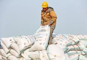 中方承諾加購美國大豆 專家質疑可行性