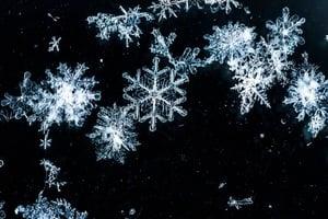 看雪花融化的逆轉過程 美不勝收