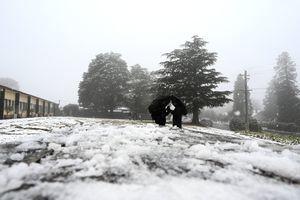 澳洲出現極端天氣 悉尼迎來25年來最冷一天