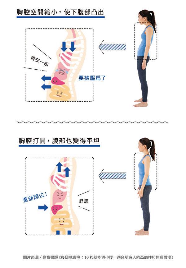 造成下腹部凸出的原因之一,是內臟凸出。(高寶書版提供)