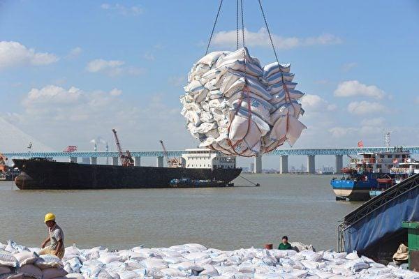 2020年至今,中共無視價格上漲,大舉進口糧食。圖為2019年9月,碼頭工人在江蘇省南通市港口轉運巴西進口大豆製成的產品。( STR/AFP via Getty Images)