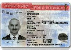 庇護申請核發工卡 美移民局:廢除三十天期限