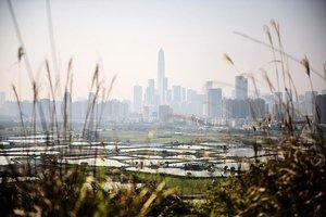 深圳租房市場低迷 房租大跳水 跌回三年前
