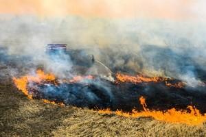 森林大火燃燒10天 逼近切爾諾貝爾核電舊址