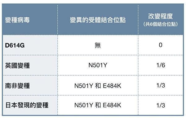 D614G、英國、南非及日本發現的變種病毒的區別。(大紀元製表)