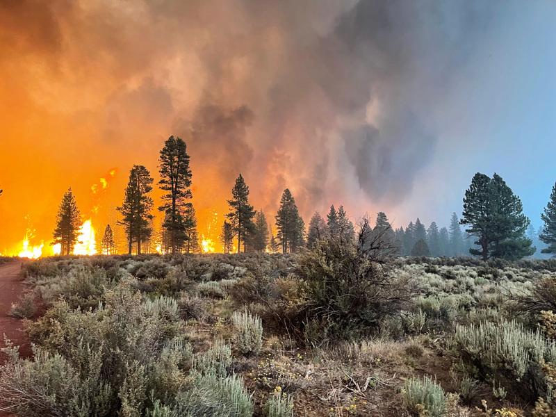 美國俄勒岡州靴筒野火規模之大 形成獨自氣候現象