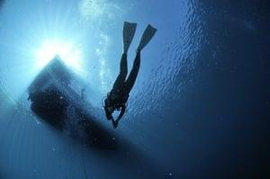 出海翻船被鯊魚環繞 潛水員苦熬三小時獲救