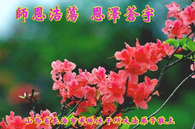 山西省長治市軍隊幹休所大法弟子恭賀李洪志大師過年好!(明慧網)