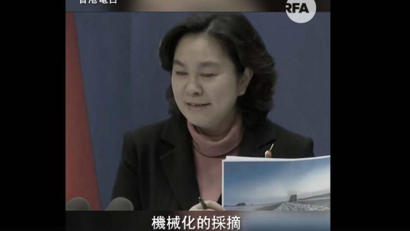 中共外交部發言人華春瑩經常瘋狂眨眼,被指撒謊的表現。(影片截圖)