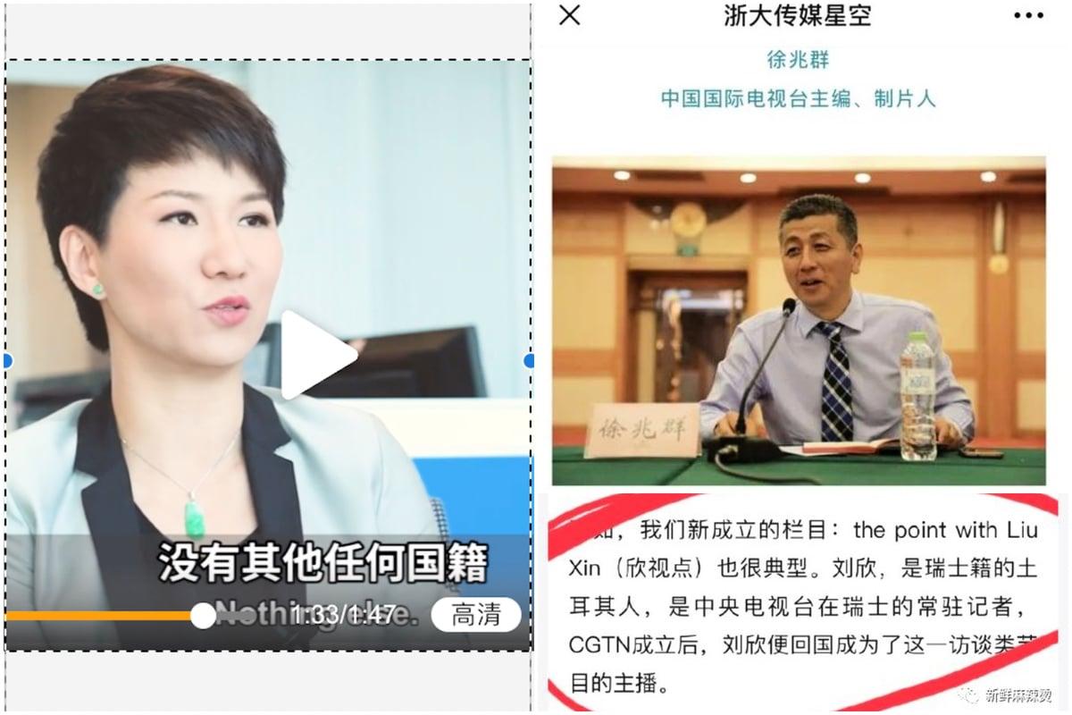 網友打臉劉欣「中國人」說法。(大紀元合成圖)
