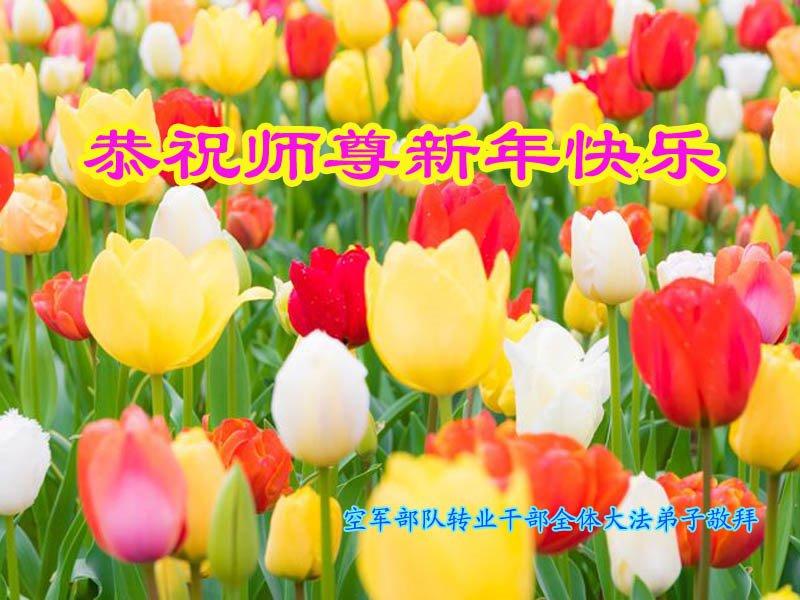 空軍部隊全體轉業幹部大法弟子恭祝師尊新年快樂!(明慧網)