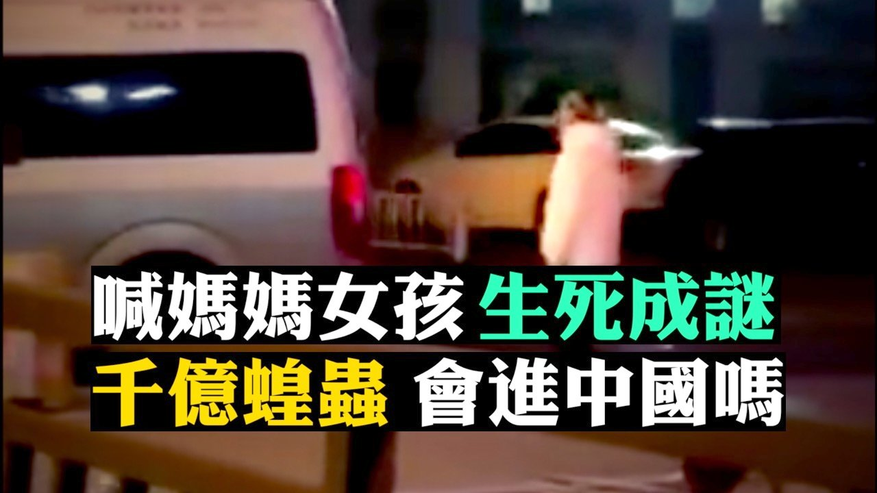 武漢處於疫區中心,很多病人得不到救治而去世,另傳上千億蝗蟲飛臨中國邊界。(新唐人合成)
