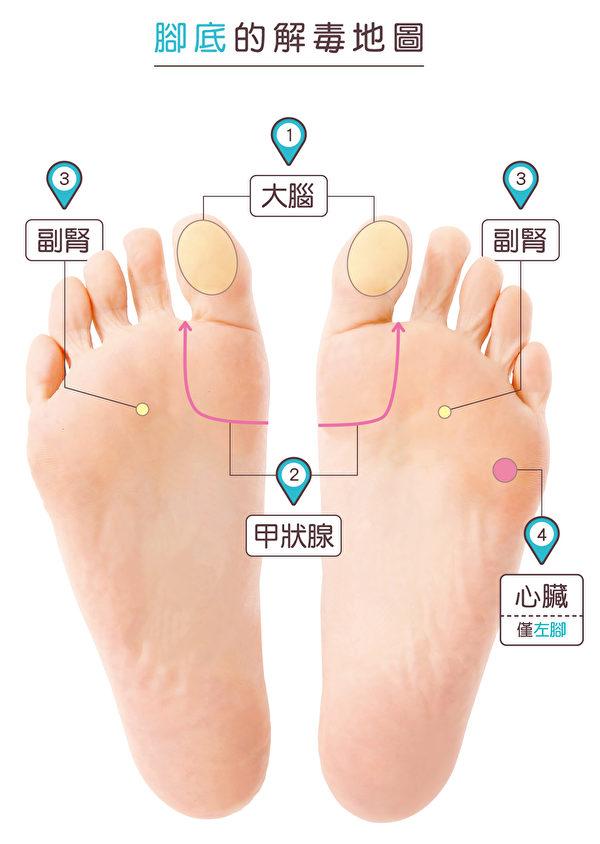 降血糖腳底按摩所用到的穴道。(蘋果屋提供)